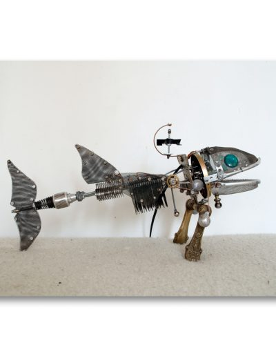 2012_flying_fish_large